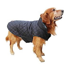 تحتوي هذه الصورة على سمة alt فارغة؛ اسم الملف هو مستلزمات-الكلاب1.jpg