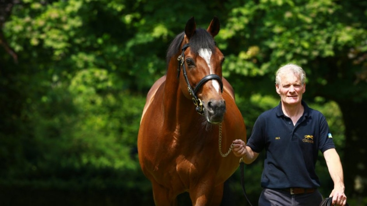 الحصان غاليليو
